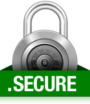 SSL required for domain name registration?